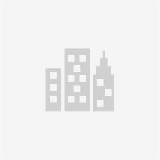 IT Business Management Solutions